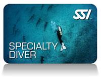 SSI Especialidades