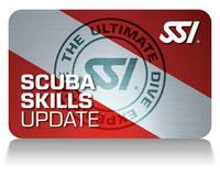 SSI Actualización de técnicas