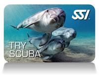 SSI Try Scuba
