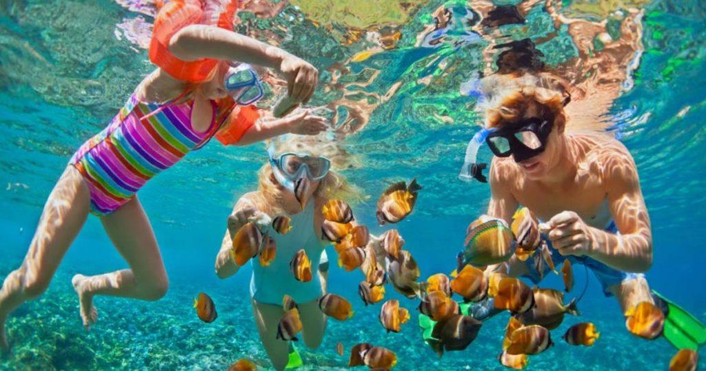 Bucea con snorkel junto a toda tu familia.