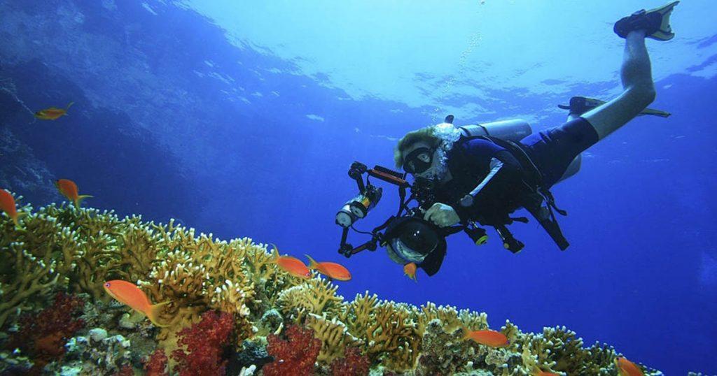 Una de las especialidades del buceo autónomo es la Fotografía Digital Submarina y en Yo Buceo tenemos el programa disponible para ti.